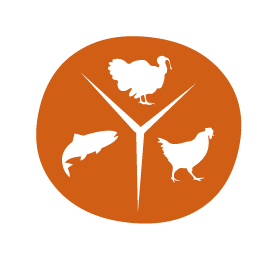Wellcore_Icon_proteinrich.png